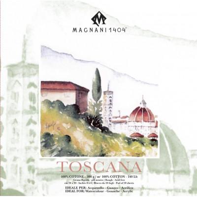 Magnani - Bloc Toscana 20x20
